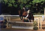 Modified Equitation-Lydon