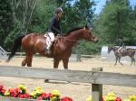 Lauren Cunningham at Windcrest Farm